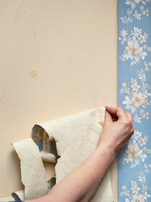 Wallpaper removal in San Mateo, CA by Nick Mejia Painting.